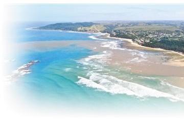 加强海洋保护守护碧海蓝天