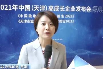 2020年中国独角兽企业数量达251家首次估值超万亿美元